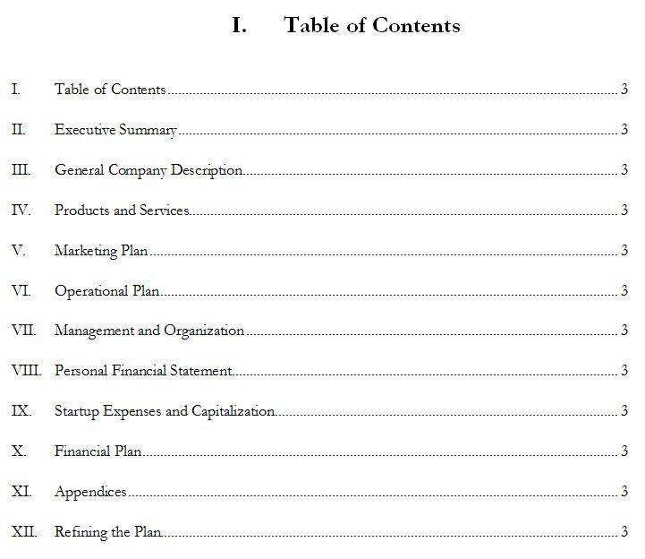 internet startup business plan pdf