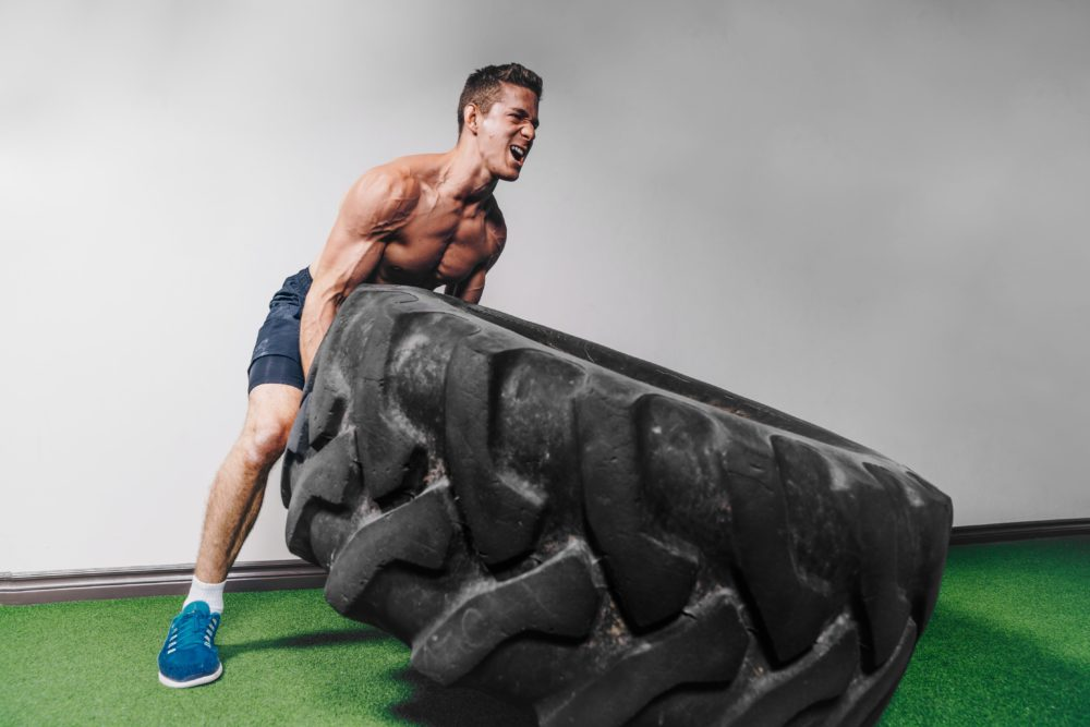 the lean muscle diet pdf