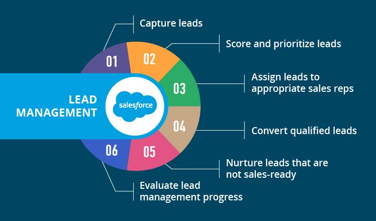 lead conversion in salesforce pdf