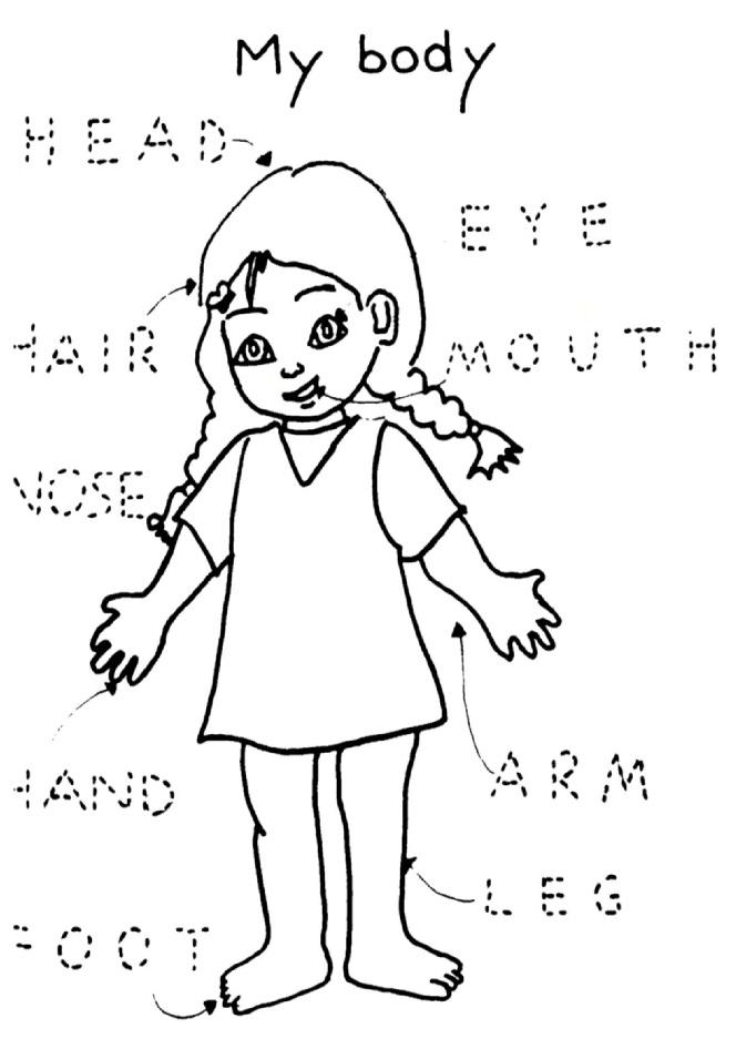 body parts exercises worksheets pdf