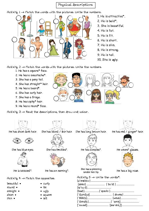 body parts exercises worksheets pdf