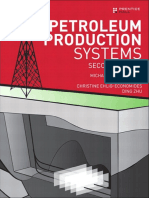 petroleum production systems hills pdf