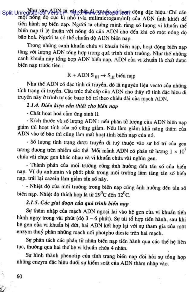 gios pdf splitter and merger 64 bit