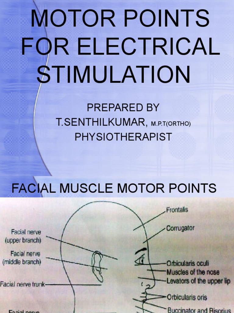 motor points for electrical stimulation pdf