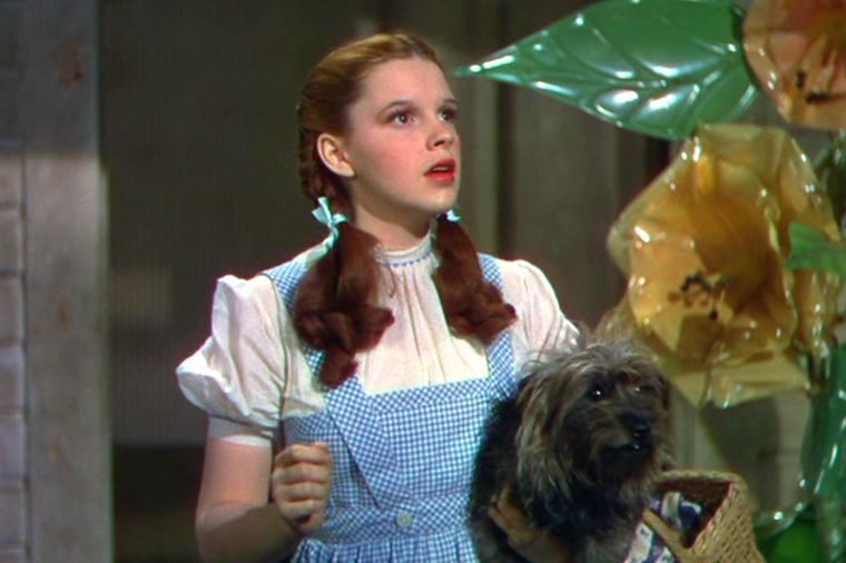 wizard of oz movie script pdf